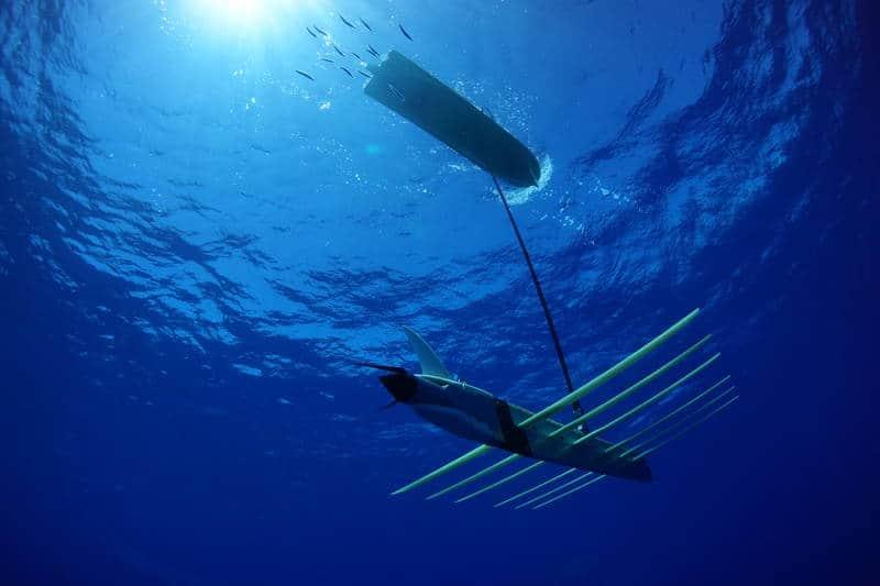 Julia is swimming underwater nude in the sea - 1 7