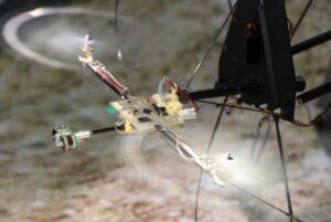 Aix-Marseille Université drone with bio-inspired eye