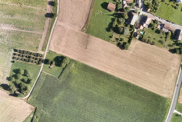 Drone Agriculture Orthomosaic Image