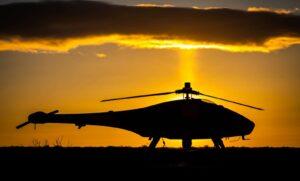 UAV Wildlife Conservation