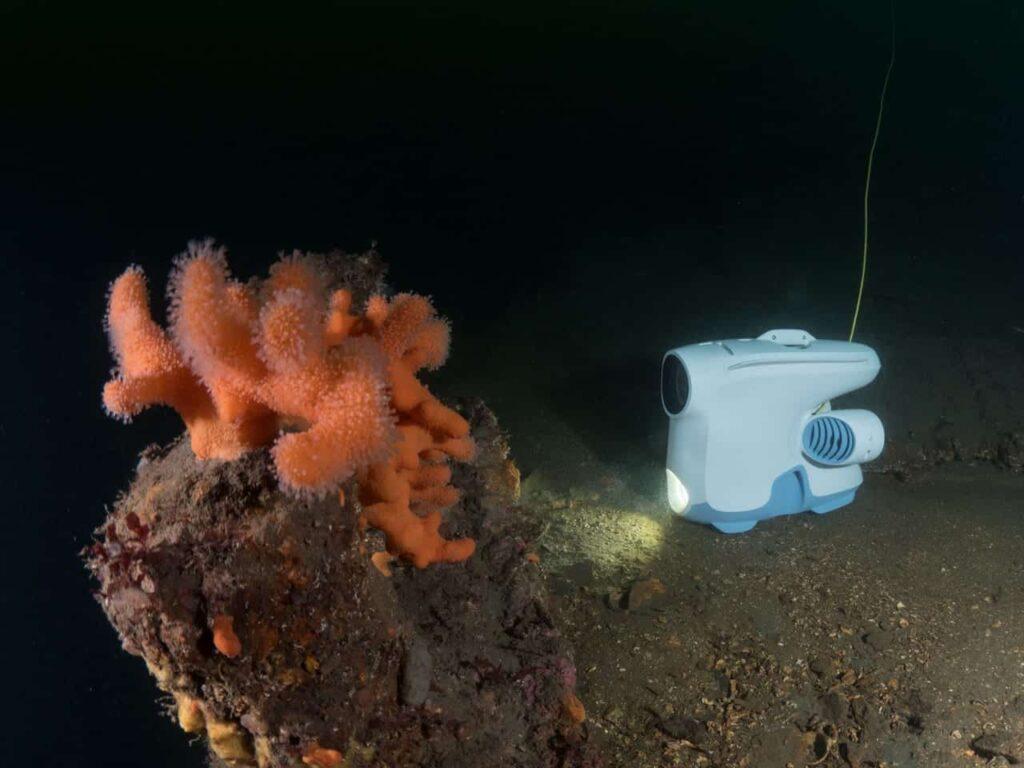 BlueEye Pioneer underwater drone