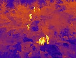 Drone Thermal Camera for Search & Rescue