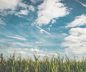UAV for Precision Agriculture