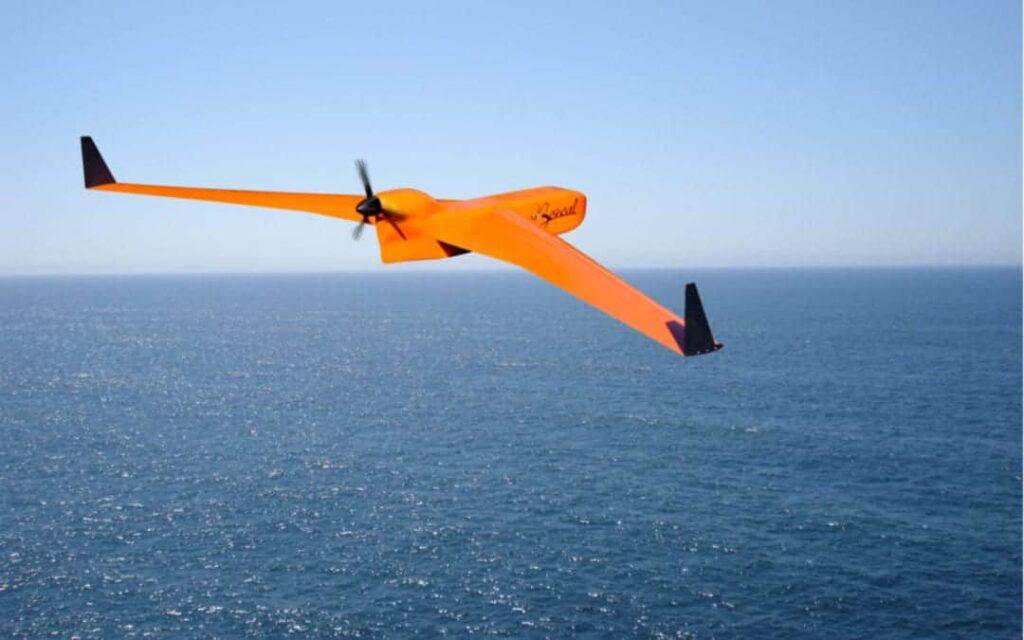 Boreal drone