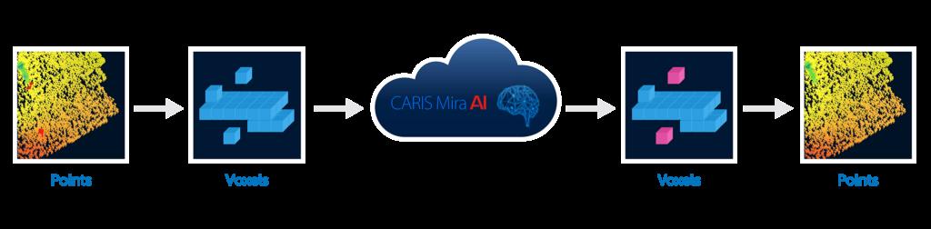 How CARIS Mira AI software works