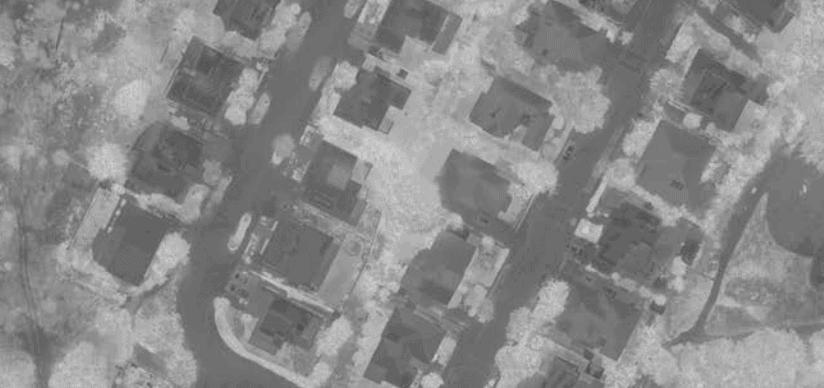 NDVI Aerial Image
