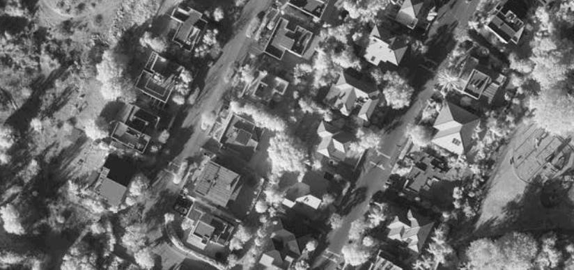 NIR Aerial Image