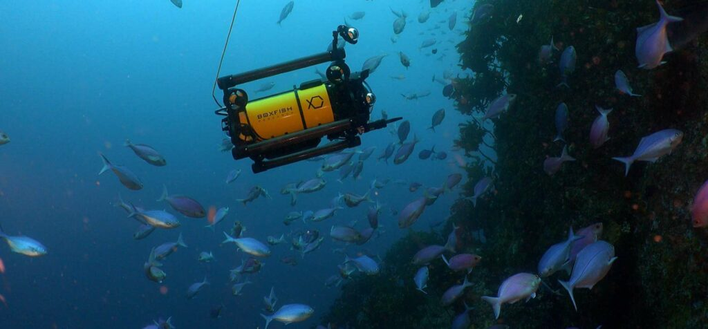Cinematography Underwater rov
