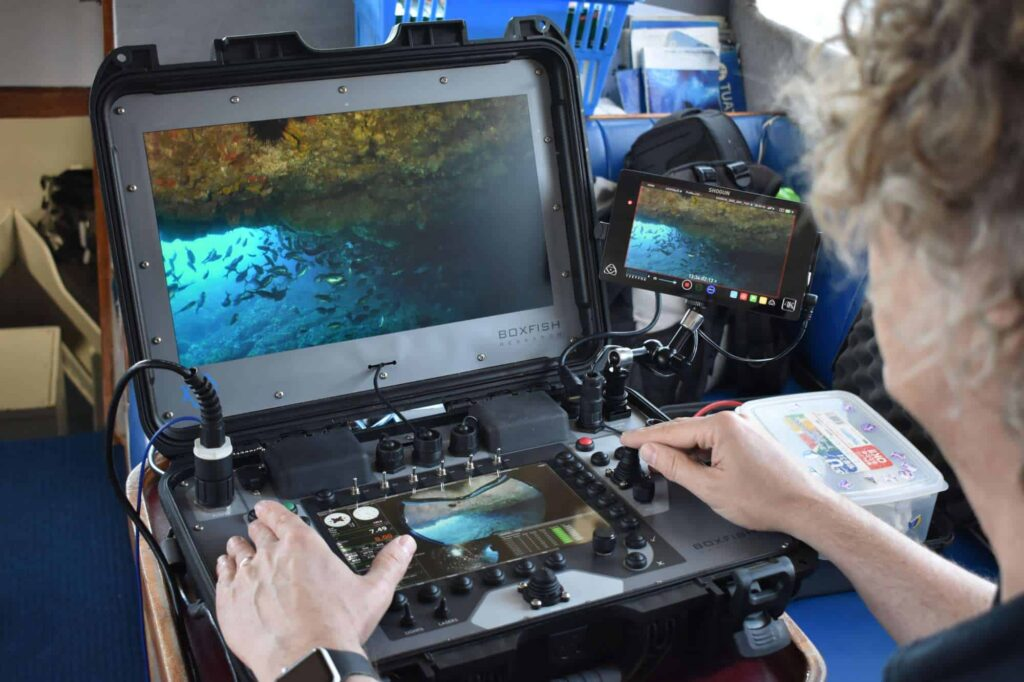 Inspection ROV robot - Console panel with fish