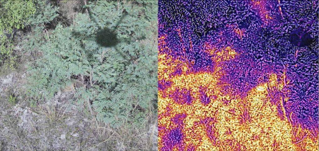 Drones for landmine detection 2